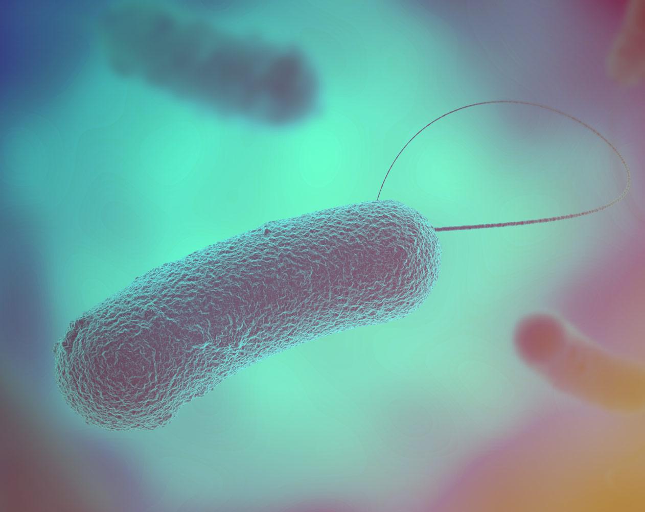 Legionella: prevenire è meglio che curare